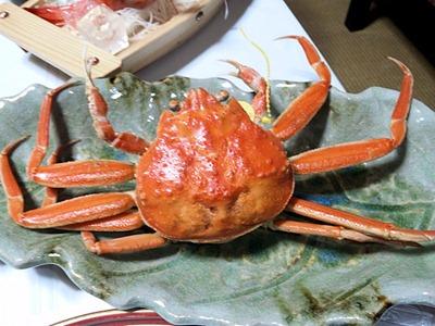 越前蟹フルコースセイコ蟹