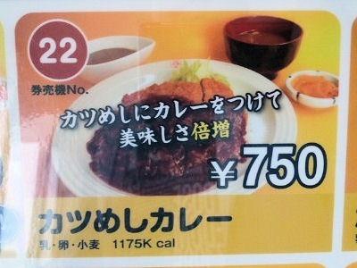 ヱスビーカレーの王様/権現湖店カツめしカレーメニュー