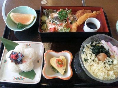 手打ちうどん琴平/週末の気変り定食