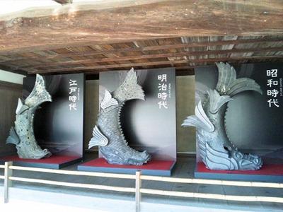 姫路城天空の白鷺見学ツアー_鯱