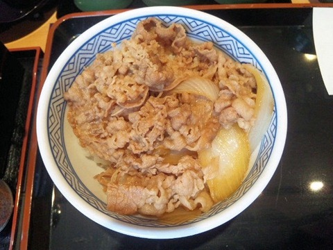 吉野家夏の牛丼祭り2011牛丼並