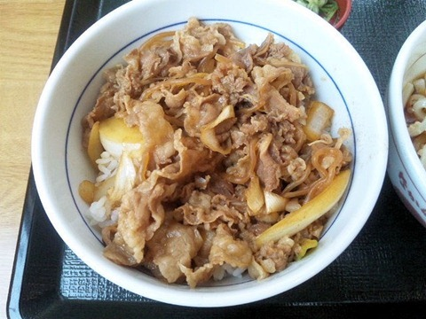 なか卯加古川店新和風牛丼