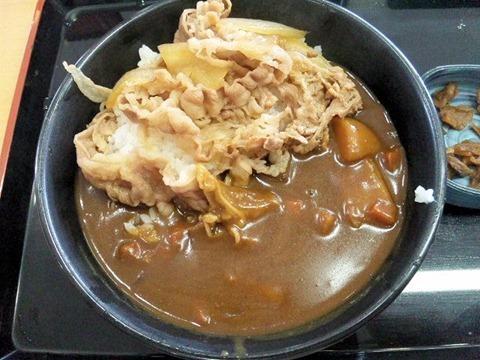 吉野家/牛丼・カレー(旨辛)