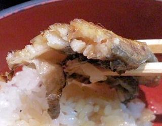 うなぎ料理専門店【魚治】うなぎ丼の厚み
