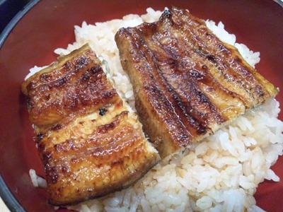 うなぎ料理専門店【魚治】うなぎ丼