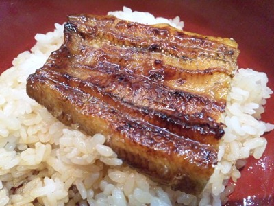 うなぎ料理専門店【魚治】うなぎ丼の蒲焼