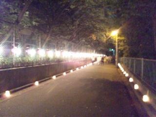 たかさご万灯祭2012行燈の路