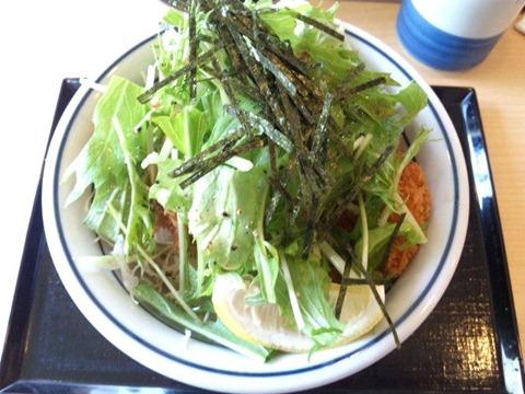かつや東加古川店塩カツ丼