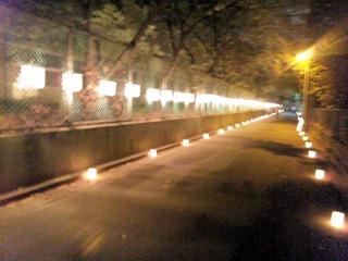 たかさご万灯祭2013行燈の路
