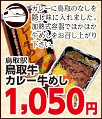 トーホーストア駅弁大会鳥取牛カレー牛めし