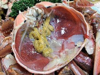 魚亭やつか/かにすきの蟹の甲羅