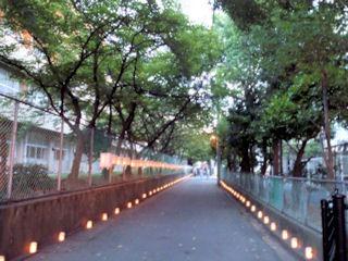 たかさご万灯祭2014行燈の路