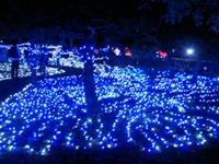 たかさご万灯祭2014夢の灯り会場