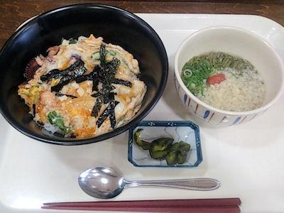 明石食堂明石海峡たこ玉丼&明石のりにゅう麺セット