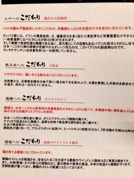 地鶏と干物ガロ屋日本一のこだわり卵のこだわり