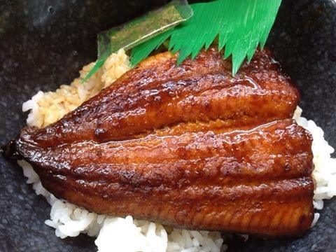 くら寿司すしやのうな丼