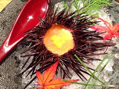 天ぷらと肉寿司燈花雲丹プリン