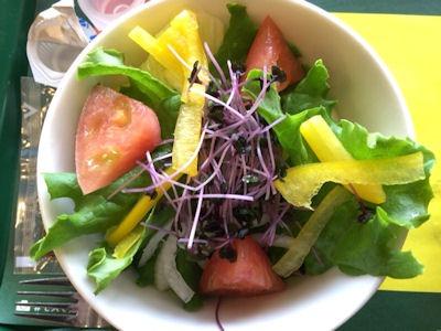 モスバーガーこだわり野菜のサラダL 和風ドレッシング<減塩タイプ>