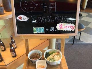 せらび亭日替り定食ミニ牛丼と天ぷらぶっかけうどんの見本