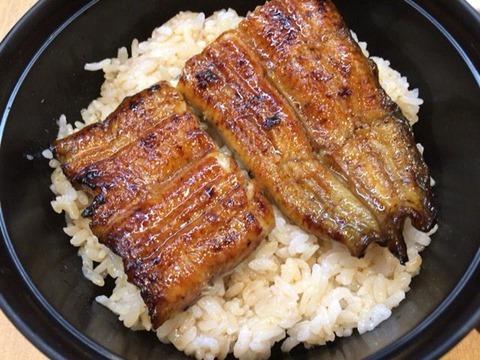 うなぎ料理専門店魚治うなぎ丼