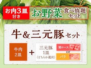 しゃぶ葉お野菜食べ放題牛&三元豚セットメニュー