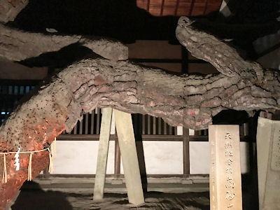 たかさご万灯祭2019高砂神社
