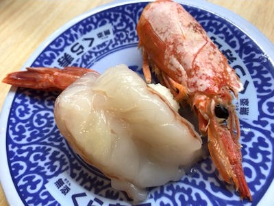 くら寿司くえvs桜鯛フェア特大赤えび
